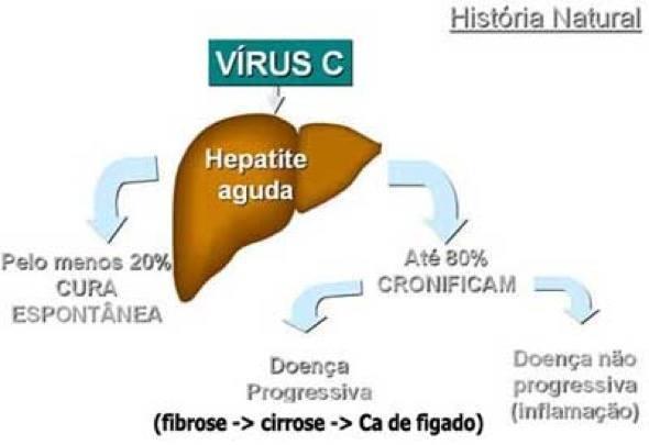 2-cura para hepatite c