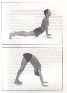 Exercícios tibetanos 5