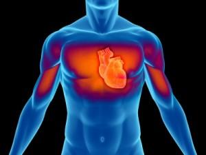 Como Acontece a Embolia Pulmonar 3