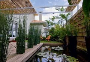 Como fazer um jardim aquático em casa