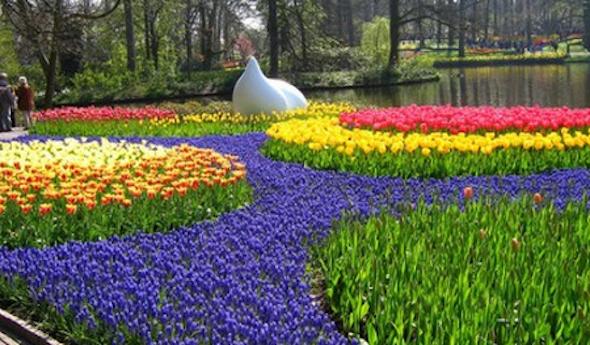 modelos+de+jardim+bonito9