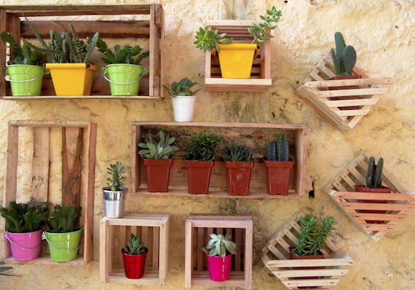 montar mini jardim apartamento10