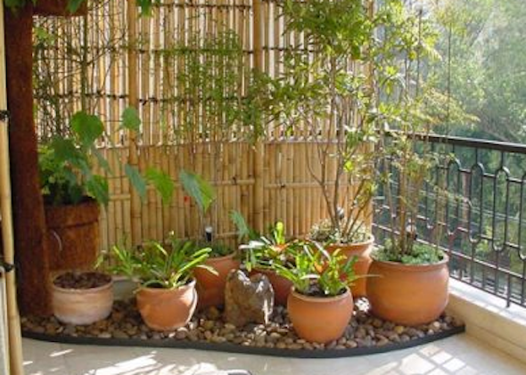 montar mini jardim apartamento13