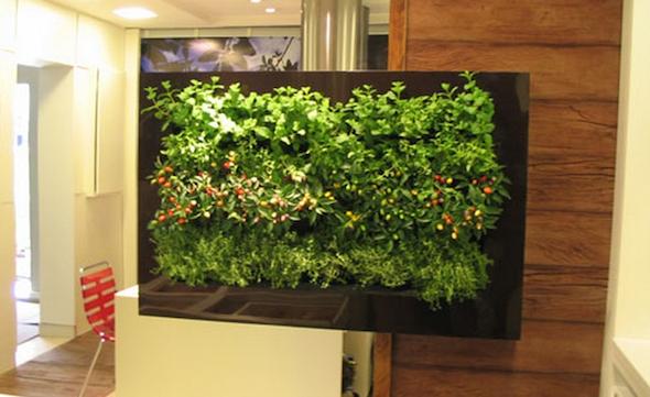 montar mini jardim apartamento2