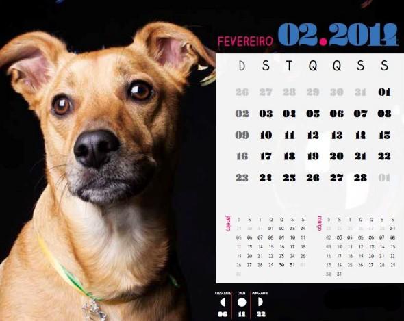 Calendário 2014 fevereiro 004