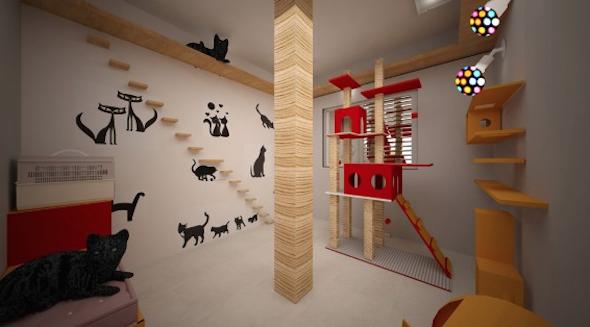 Como montar um quarto para gato 3