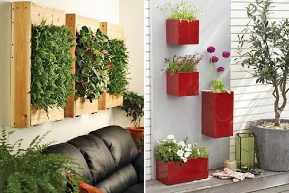Montar um jardim vertical1