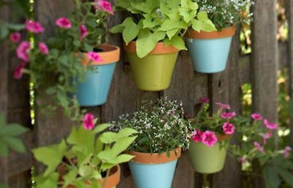 Montar um jardim vertical13