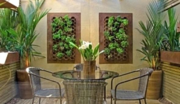 Montar um jardim vertical7