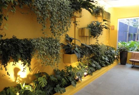 Montar um jardim vertical8