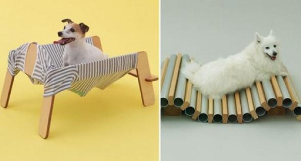 Arquitetura-moderna-para-cachorros-006