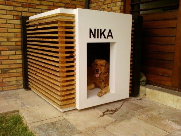 Arquitetura-moderna-para-cachorros-007