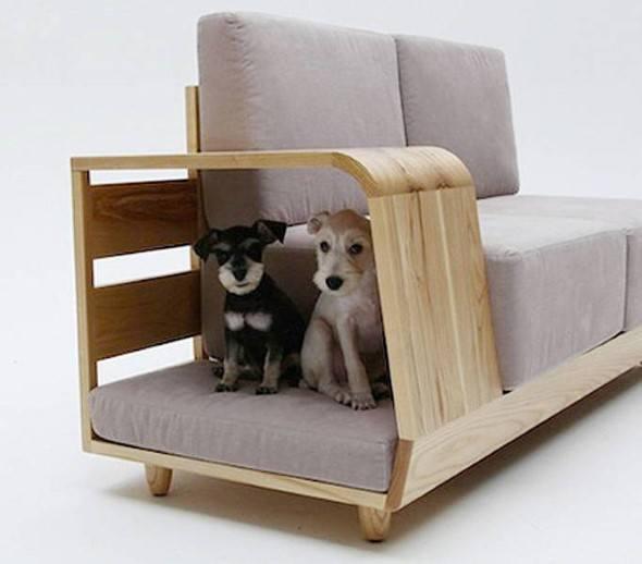 Arquitetura-moderna-para-cachorros-010