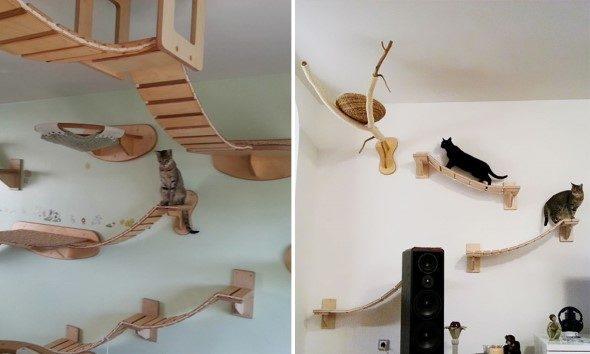 Arquitetura-moderna-para-gatos-007