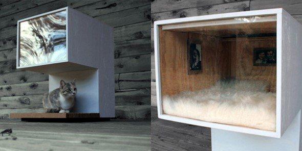 Arquitetura-moderna-para-gatos-010