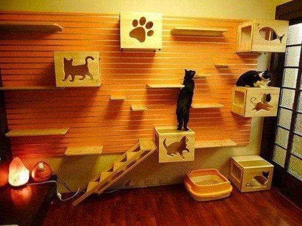 Arquitetura-moderna-para-gatos-014
