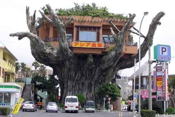 04-Casas-inusitadas-ao-redor-do-mundo-Japão