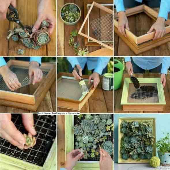 Jeito prático de fazer um mini jardim vertical.