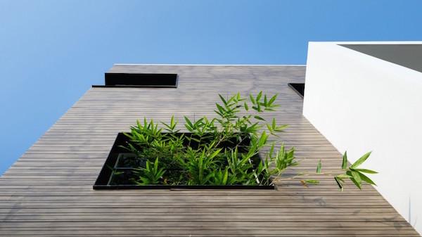 BQ-17 Residence, casa minimalista3