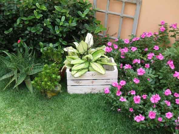 formas de deixar seu jardim mais charmoso 011