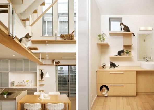Móveis criativos para quem tem gatos 004