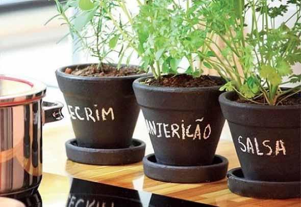 Dicas para montar uma boa horta em casa 001