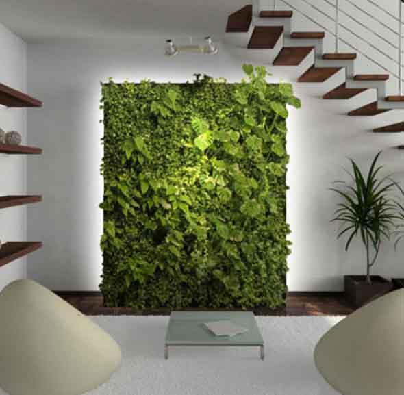 Onde colocar plantas dentro de casa 014