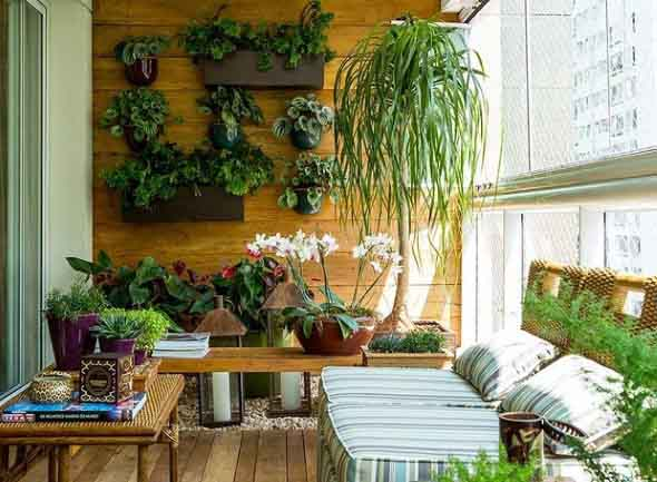 Onde colocar plantas dentro de casa 016