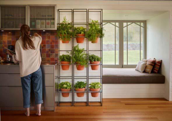 Onde colocar plantas dentro de casa 017