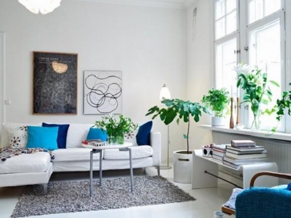 Onde colocar plantas dentro de casa 021
