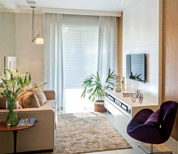 Onde colocar plantas dentro de casa 022