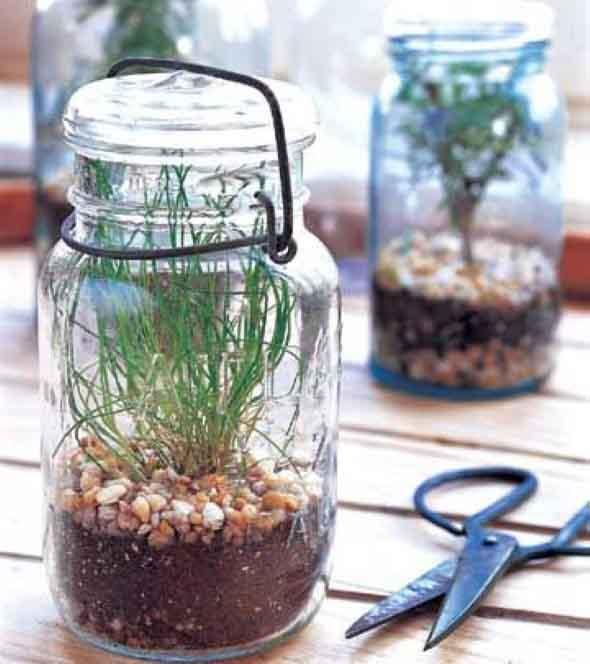 Reciclar potes de vidro 020