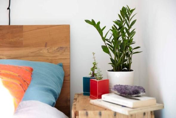 Vasinhos de flores e plantas para enfeitar a casa 007