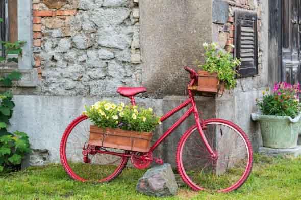 Bicicleta em casa 014