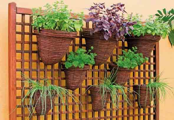 Jardim vertical com treliças pela casa 006