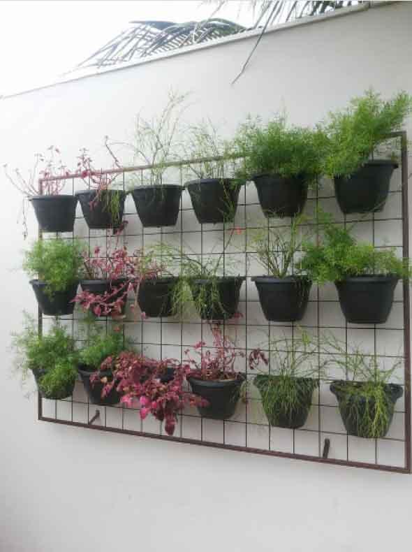 Jardim vertical com treliças pela casa 007