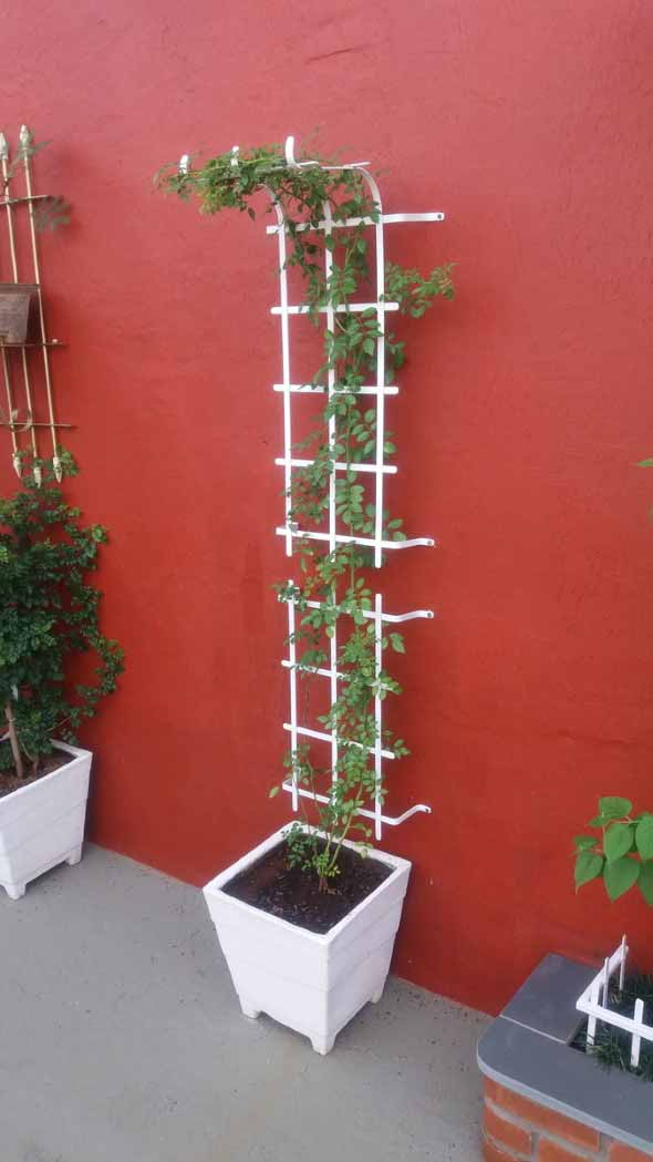 Jardim vertical com treliças pela casa 014