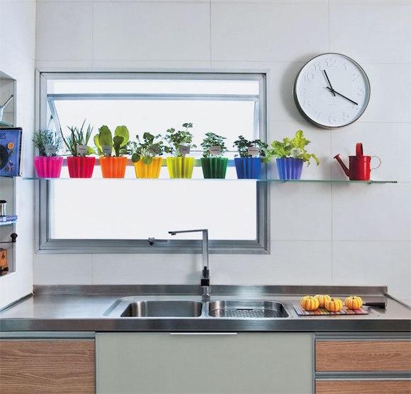 plantas na cozinha 9