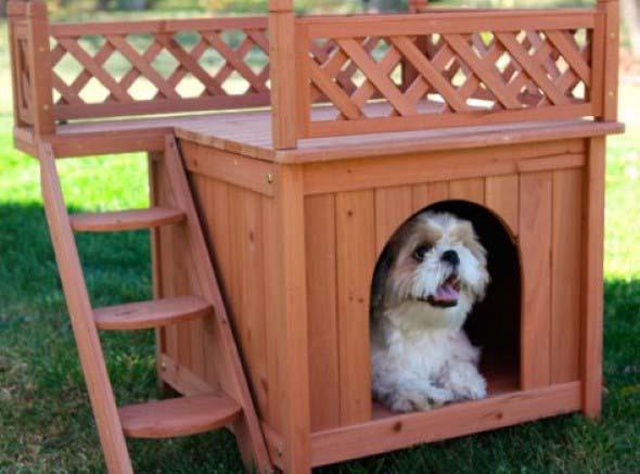 Casinhas de cachorro cheias de estilo 002
