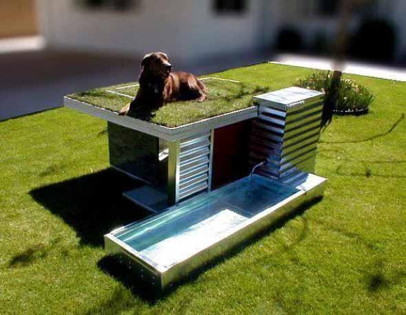 Casinhas de cachorro cheias de estilo 015