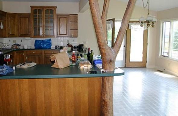 Árvore dentro de casa 015