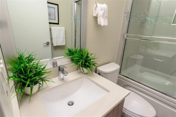 Dicas para ter plantas no banheiro 006
