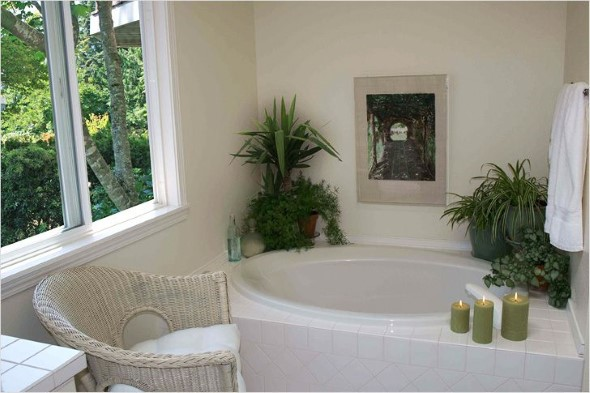 Dicas para ter plantas no banheiro 007