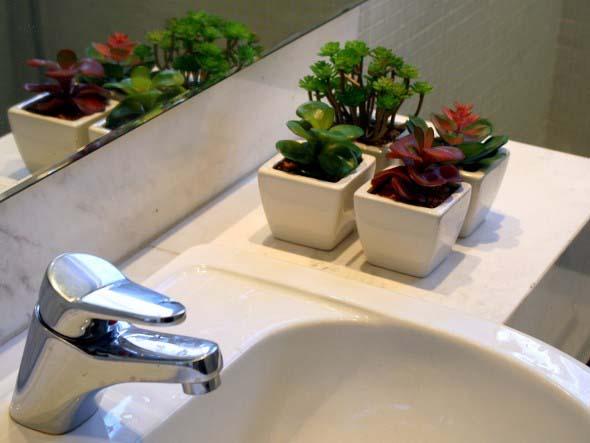 Dicas para ter plantas no banheiro 010