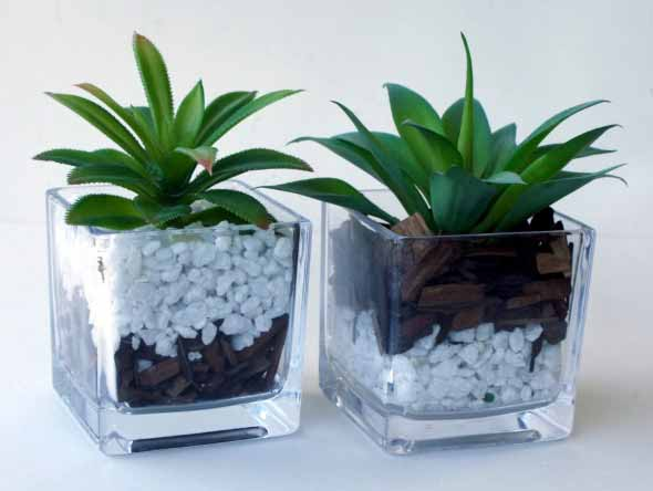 Vasos de plantas quadrados na decoração 001