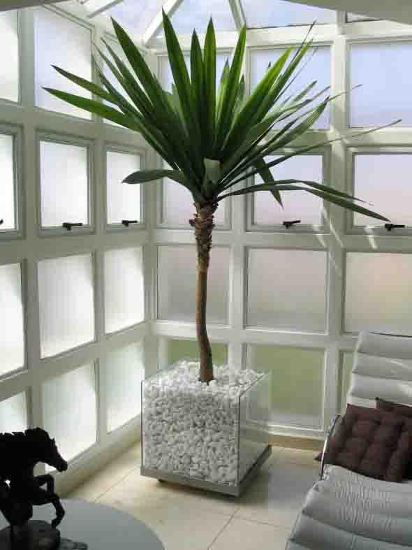 Vasos de plantas quadrados na decoração 006