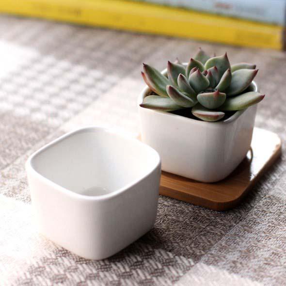 Vasos de plantas quadrados na decoração 008