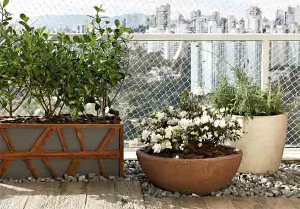 Vasos de flores na varanda 007