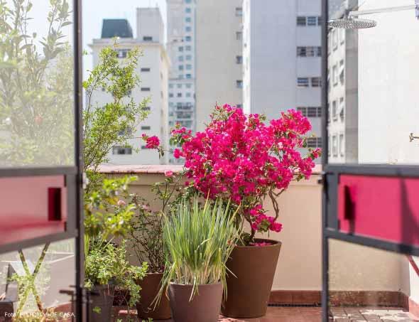 Vasos de flores na varanda 012