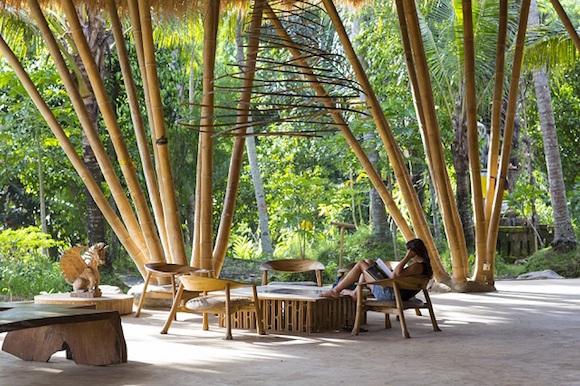 bambu 14
